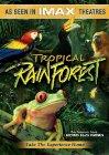 Tropical Rainforest / Тропический лес