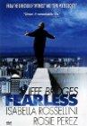 Fearless / Бесстрашный