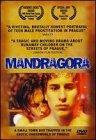 Mandragora / Мандрагора
