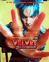 Velvet Goldmine / Бархатная золотая жила