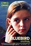 Bluebird / Синяя птица