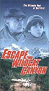 Escape from Wildcat Canyon / Побег из каньона Дикой кошки