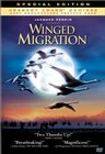 Peuple migrateur, Le / Птицы, Странствующий народ