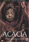 Acacia / Акация