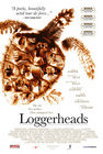 Loggerheads / Морские черепахи