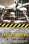 Experiment / Эксперимент