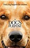 Dog's Purpose / Собачья жизнь